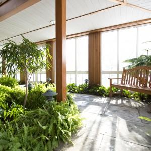Indoor garden in the Interfaith Sanctuary