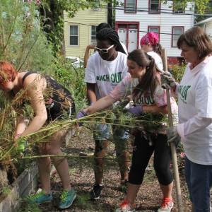 Volunteers work together in a garden.