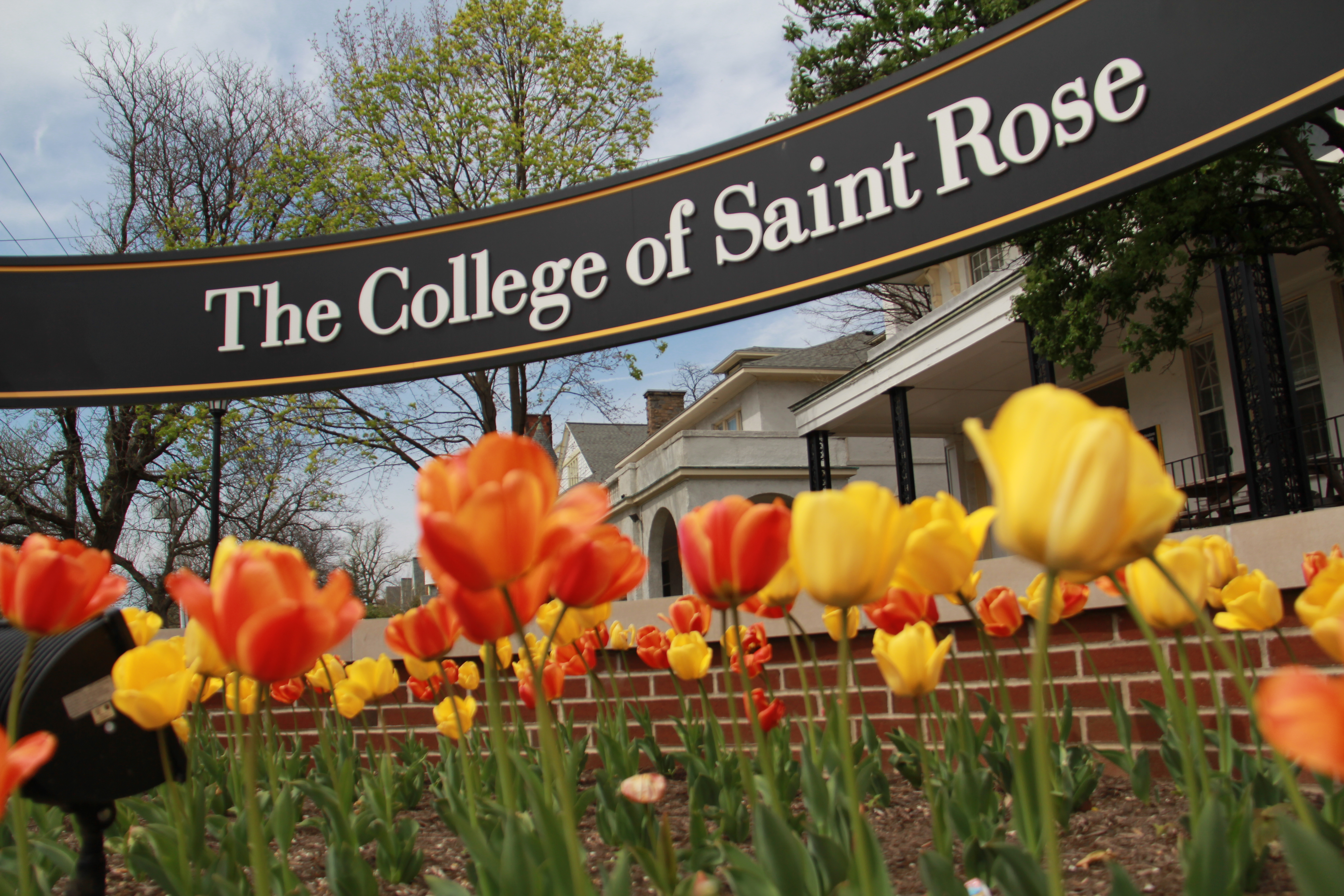 Saint Rose Sign with Tulips